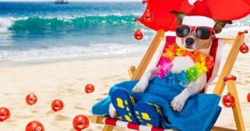 20 lustige Bilder mit Sprüchen zum Wochenende