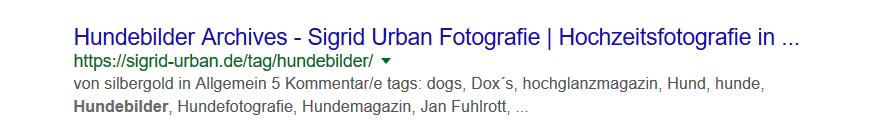 So sollte eine Meta-Description nicht aussehen.