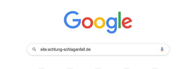 """Geben Sie in der Google-Suche das Wort """"site:"""" (mit Doppelpunkt) und dann den Namen Ihrer Domain ein. So zeigt Ihnen Google, welche Seiten von der Suchmaschine bereits indexiert wurden."""