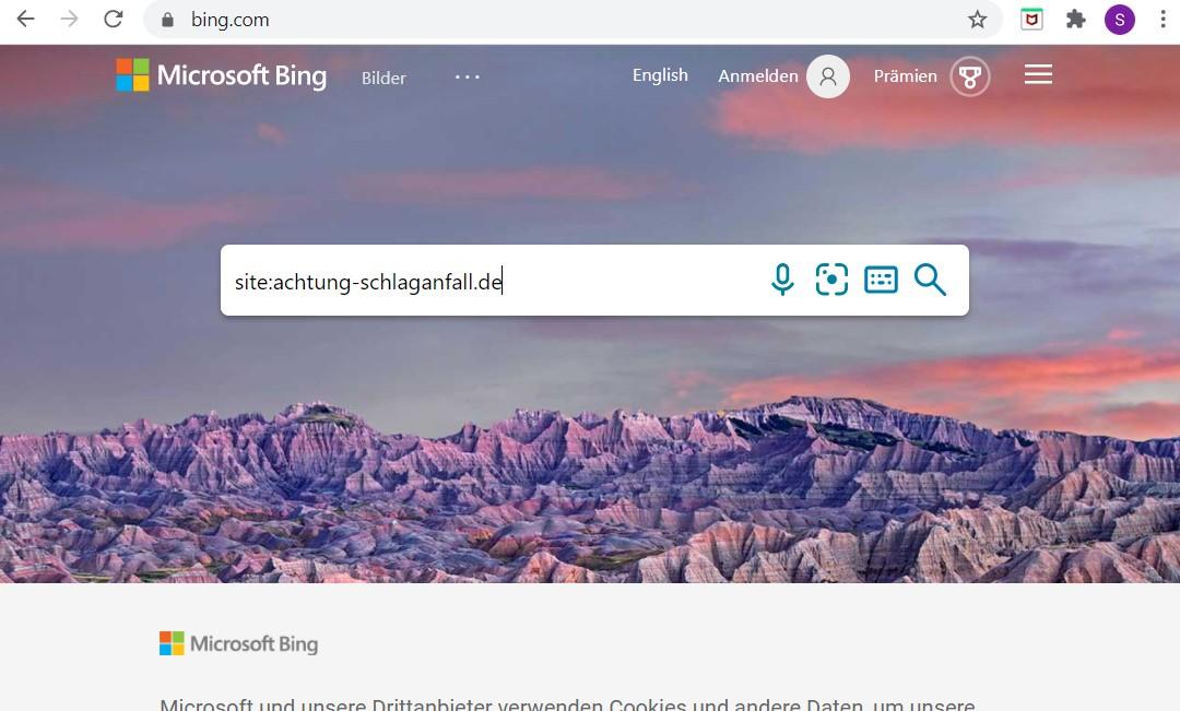 """So können Sie den Status der Indexierung bei Bing überprüfen: geben Sie """"site:"""" und den Namen der Domain Ihrer Webseite ein."""